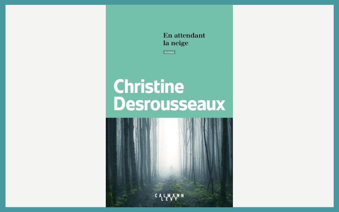 En attendant la neige – Christine Desrousseaux