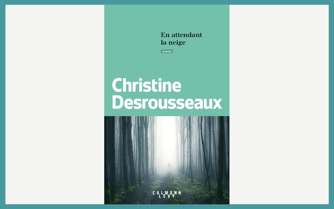 En attendant la neige, Christine Desrousseaux