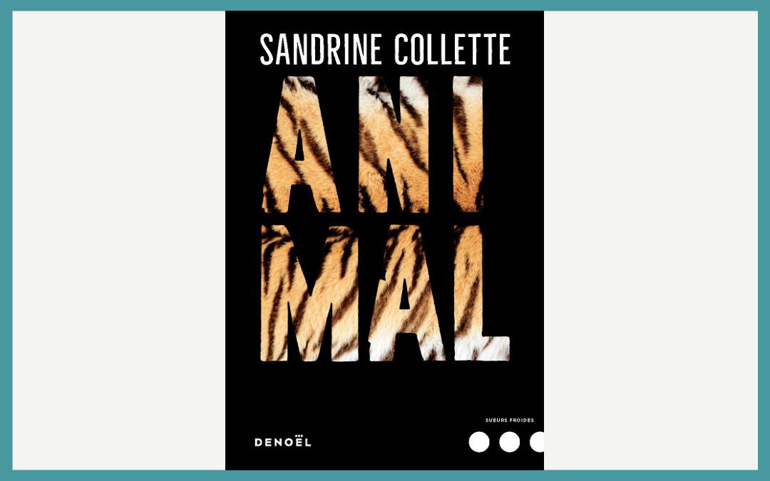 Animal de Sandrine Collette