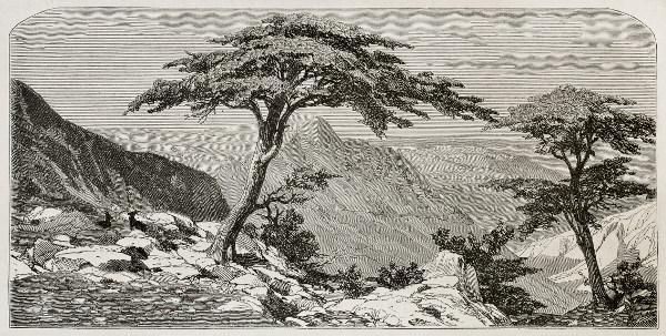 La Kabylie, illustration